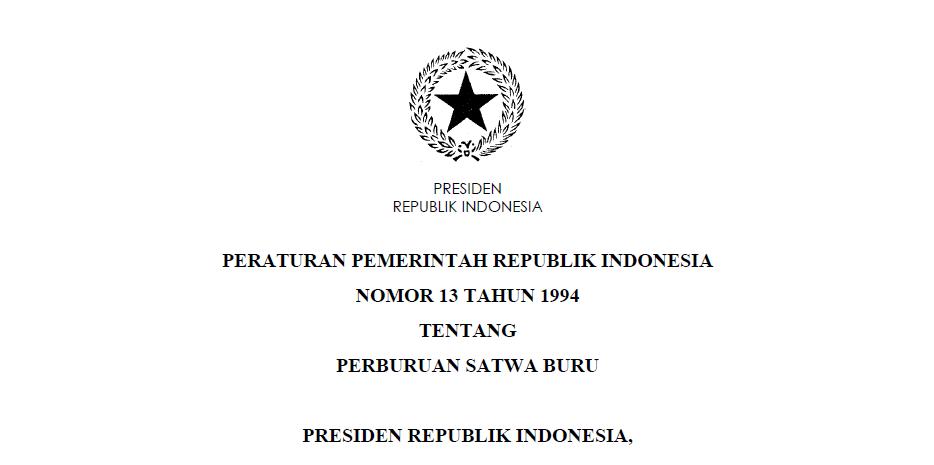 pp no 13 1994