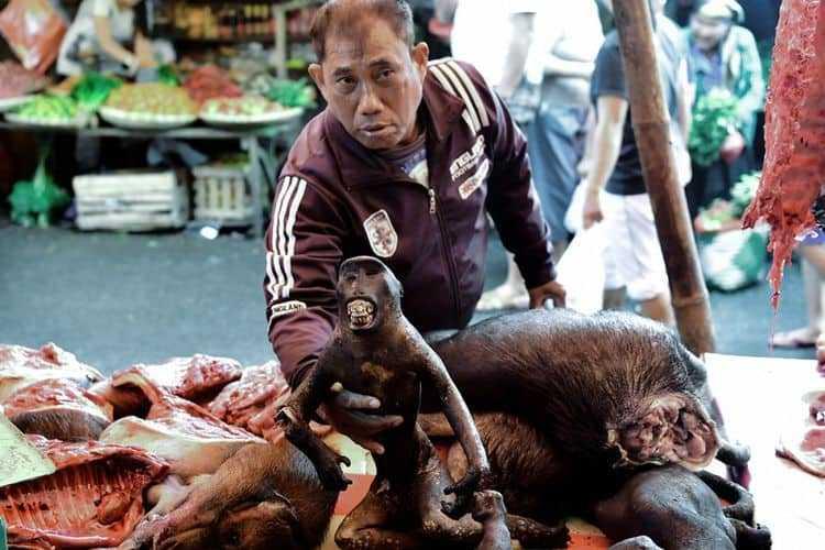 pedagang pasar tomohon