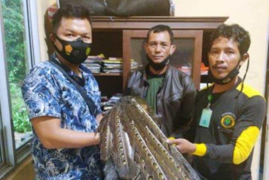 kuau raja sumatra