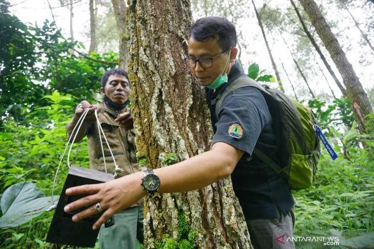 Pemasangan camera trap di lereng Gunung Wilis