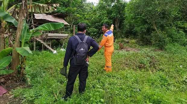 Petugas memeriksa lokasi kemunculan beruang