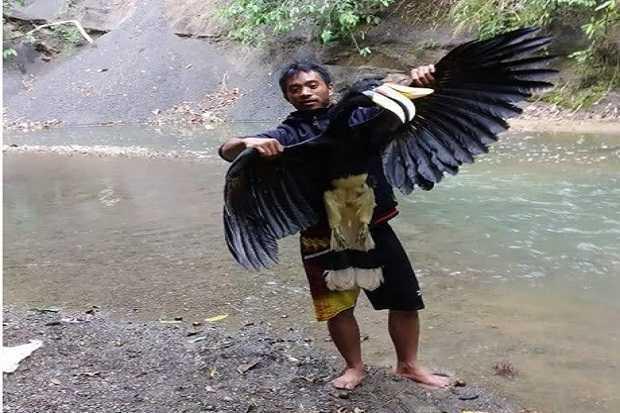 unggahan burung
